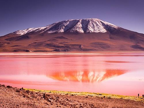 Marriott Bonvoy - Bolivia - Santa Cruz de la Sierra