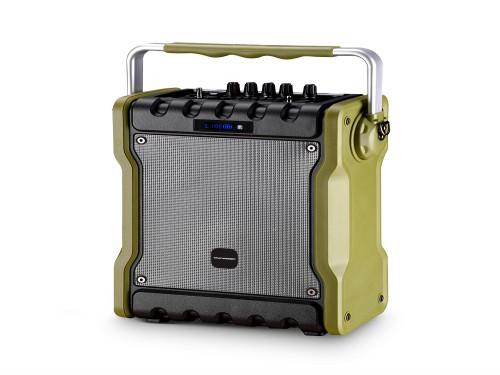 Parlante Bluetooth Inalámbrico Portátil Karaoke 30w Tagwood