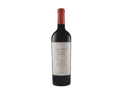Saurus Select Cabernet Sauvignon x 6 40% - Patagonia Argentina
