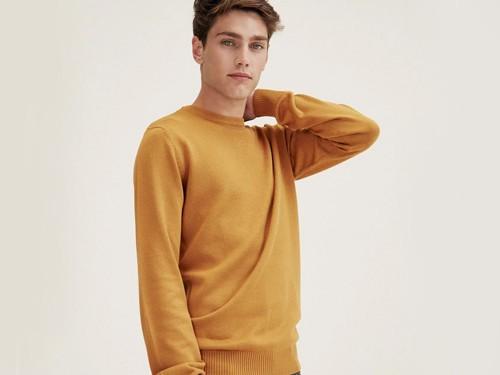 Sweater Voer, Hombre, Escote Redondo, Algodón, Menguado, Mostaza Equus