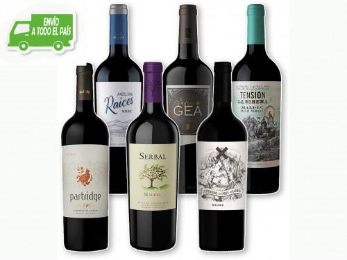 Caja de Vinos Mix Bodegas Boutique Premium - Oferta Hot Sale -