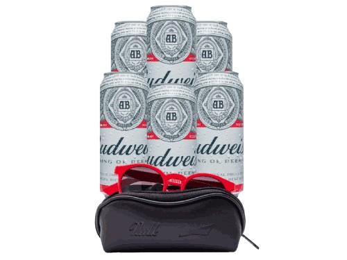 Pack 6 Cervezas Budweiser con Lentes by Vulk