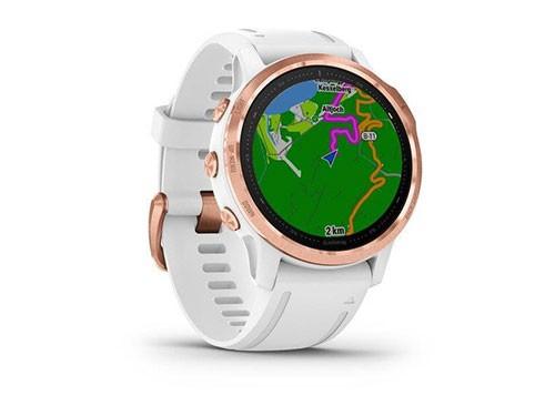 Garmin Fenix 6S Reloj Multi-Deporte