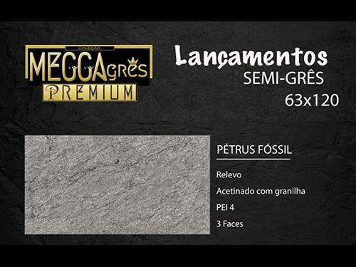 PORCELANICO SATINADO PETRUS FOSSIL 63X120 CAJA 2,25M2 MEGGAGRES