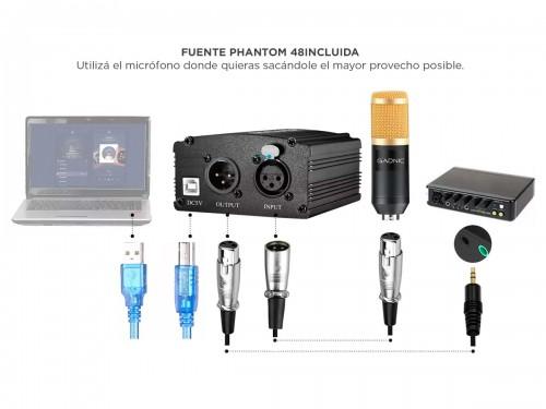 Kit Microfono Profesional Condenser Con Brazo + Phanton 20hz