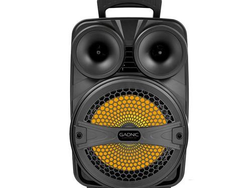 Parlante Gadnic Live Studio XBS11 Bluetooth 2500w