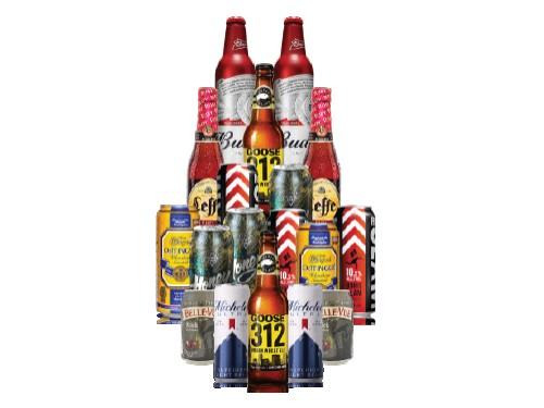 Pack 18 Cervezas Variadas del Mundo