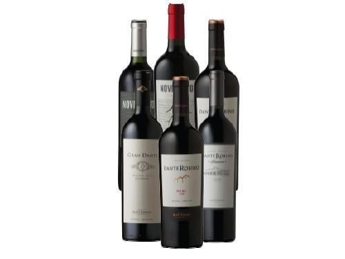 Pack de 6 Vinos Malbec