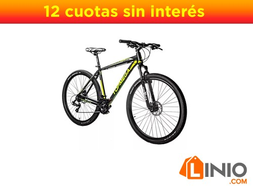 Bicicleta Topmega Sunshine Rodado 29 MTB