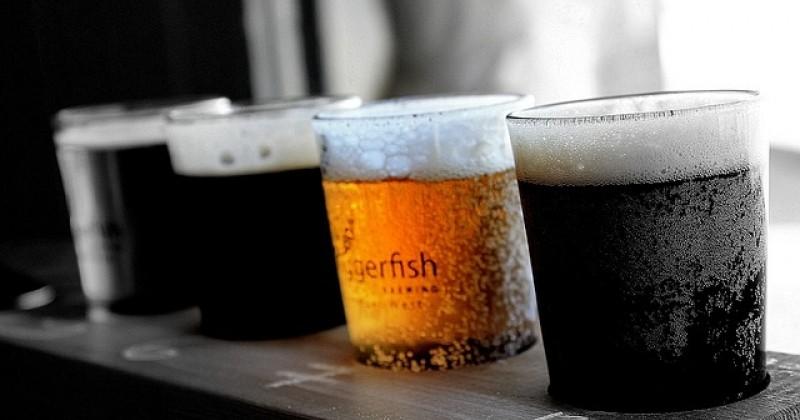 ¿Qué tipos de cerveza y vino existen?